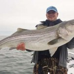 Striper caught by Doug Steffe in the Chesapeake Bay