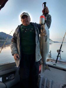 Striped bass, fishing Tennessee,big striped bass