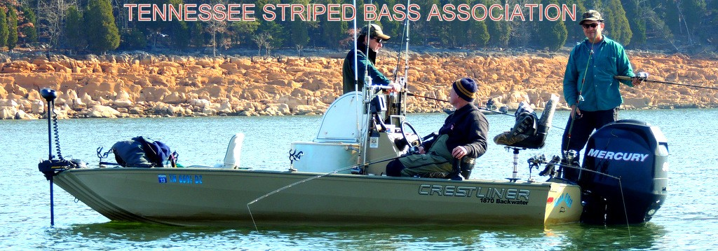 Tennessee Striped Bass Association, TSBA