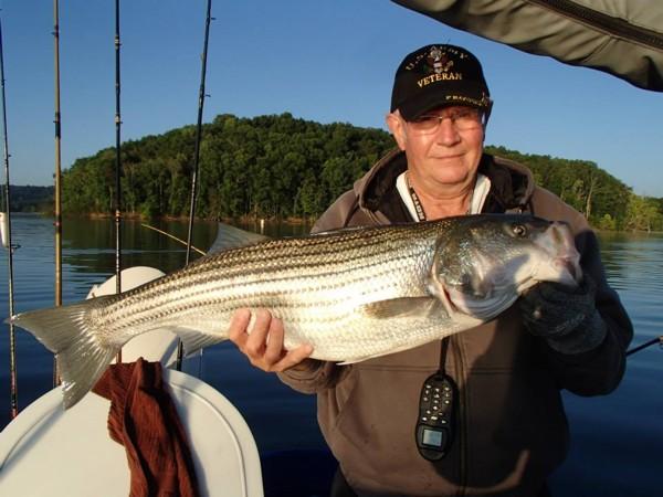 Tennessee Striped Bass Association, TSBA